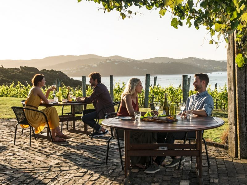 Couples sitting relaxing in vineyard